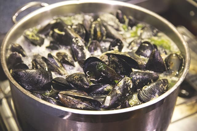 Best seafood boiler