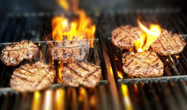 beast propen grill under 300
